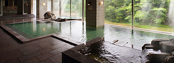 日高見の湯 大浴槽
